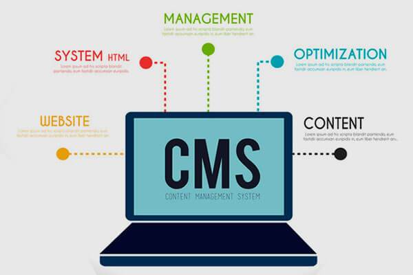 CMS based Websites